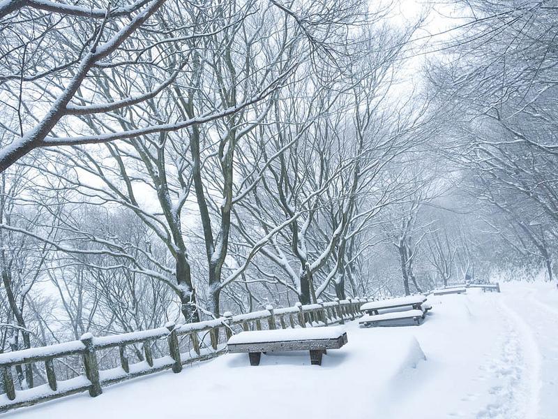關西近郊﹞大阪第一高山-金剛山 雪不停國!拔山涉雪攻頂試試不一樣的大阪玩法